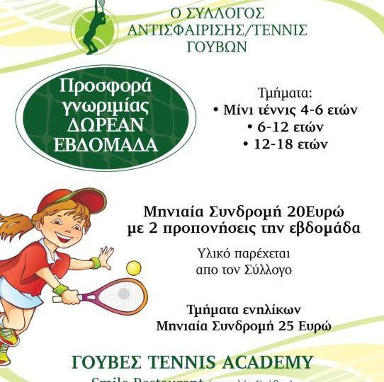 Gouves Tennis Academy